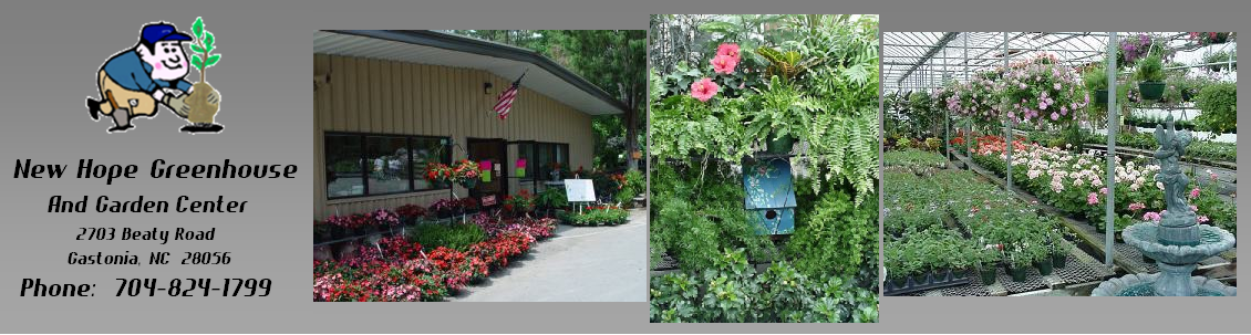 New Hope Greenhouses and Garden Center